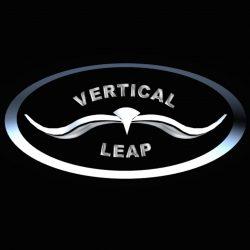 Vertical Leap 1